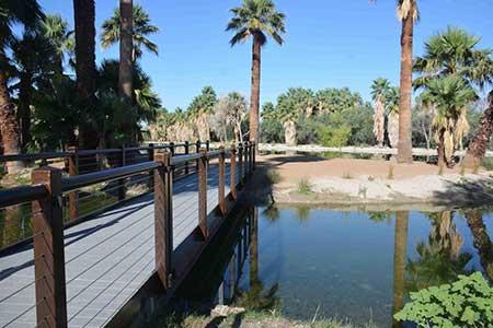 Visit Agua Caliente Park
