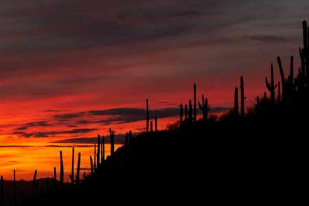 Gates Pass for the best sunset in Tucson
