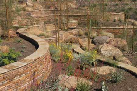 Scottsdale's Xeriscape Garden highlights water conservation.