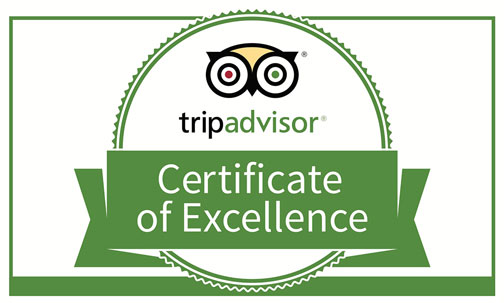 Carnival of Illusion Reviews Award from TripAdvisor