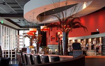 Iguana Cafe Bar Tucson Az
